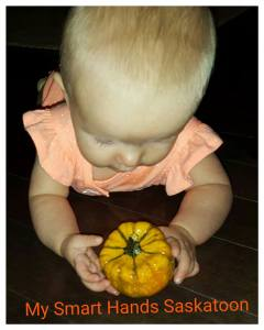 pumpkin play